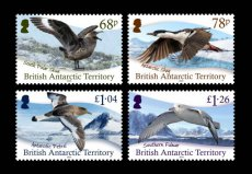 BRITISH ANTARCTIC TERRITORY 2020 Birds